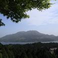 新緑と駒ヶ岳